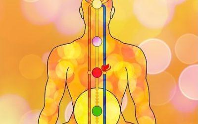 Teil 2 – Der Schlüssel zwischen Hormonen und Energie!
