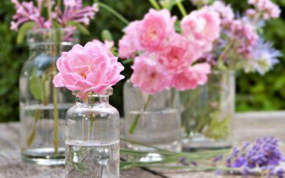 Den großen Seins-Wandel im Leben mit Bachblüten begleiten